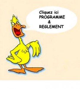reglement-300x2651-270x300